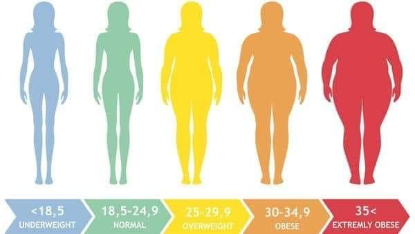 Body Fat Percentage Not Body Mass Index